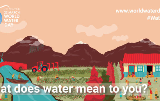 simple ways to save water